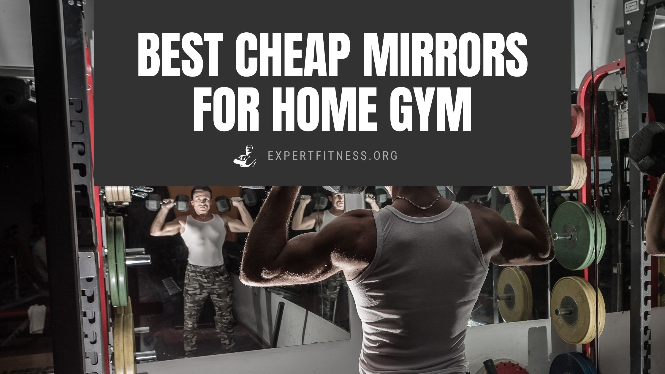 EF- Best cheap mirrors for home gym