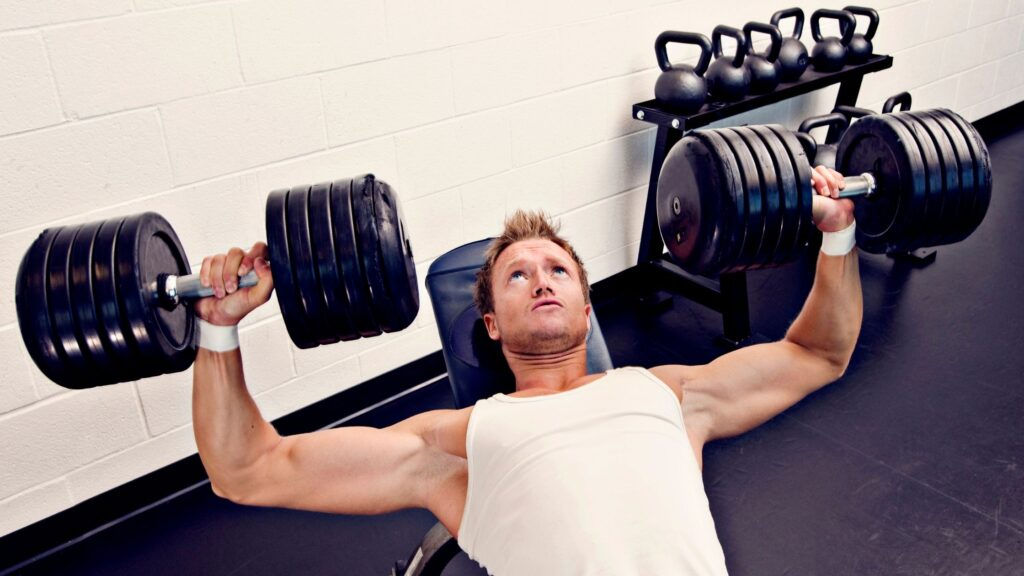 body champ weight bench
