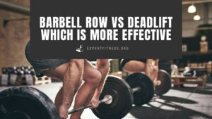 barbell row vs. deadlift